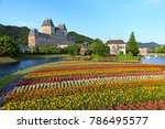 colorful flower garden near...   Shutterstock . vector #786495577
