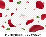 Stock vector falling red rose petals and green leaves isolated on transparent background vector illustration 786593107