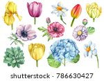 spring flowers set watercolor ... | Shutterstock . vector #786630427