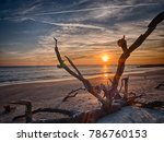 beach sunrise with and orange... | Shutterstock . vector #786760153