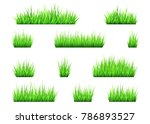 green grass and bushes isolated ... | Shutterstock .eps vector #786893527