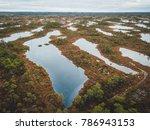 drone aerial view of huge swamp ... | Shutterstock . vector #786943153