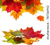 autumn leaves falling isolated... | Shutterstock . vector #78736942