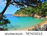 seascape of the beautiful bay...   Shutterstock . vector #787423513