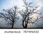 vietnam countryside landscape... | Shutterstock . vector #787496533