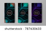 leaflet with green and purple... | Shutterstock .eps vector #787630633
