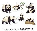 pandas in cartoon style  ... | Shutterstock .eps vector #787887817