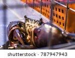 Fresh Alive Black Sea Crab Tie...