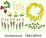 mimosa flowers and spring plant ... | Shutterstock .eps vector #788128543