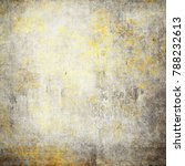 large grunge textures and... | Shutterstock . vector #788232613