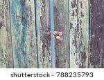 Scorched Door Of A Village...
