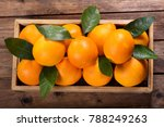 fresh orange fruits with leaves ... | Shutterstock . vector #788249263