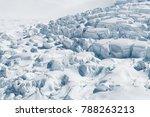 fox glacier new zealand west... | Shutterstock . vector #788263213