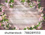 spring blooming branches on... | Shutterstock . vector #788289553