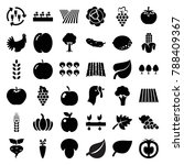 organic icons. set of 36... | Shutterstock .eps vector #788409367