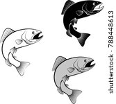 isolated trout   clip art... | Shutterstock .eps vector #788448613