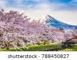 mt. fuji japan in spring from... | Shutterstock . vector #788450827