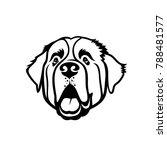 st. bernard dog   isolated...   Shutterstock .eps vector #788481577