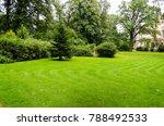 green decorative garden | Shutterstock . vector #788492533