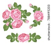 set collection of pink roses... | Shutterstock .eps vector #788495203