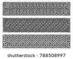 celtic knots medieval border... | Shutterstock .eps vector #788508997