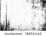 abstract background. monochrome ... | Shutterstock . vector #788541163