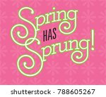spring has sprung  fun custom... | Shutterstock .eps vector #788605267