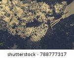 gardening  weeding weeds....   Shutterstock . vector #788777317