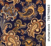 hand drawn pattern with paisley ... | Shutterstock . vector #788798863
