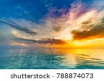 freedom and carefree concept... | Shutterstock . vector #788874073