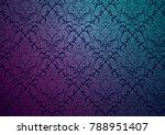 vector damask wallpaper design  ... | Shutterstock .eps vector #788951407