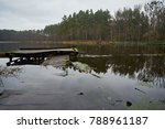 forest lake in the autumn... | Shutterstock . vector #788961187