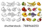 set fruits. mango  lime  banana ... | Shutterstock .eps vector #788966053