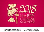 happy chinese new year with... | Shutterstock .eps vector #789018037