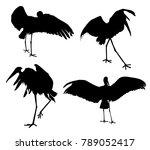 cranes birds set cranes birds... | Shutterstock .eps vector #789052417