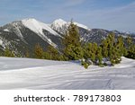 view to the snowy peaks of the...   Shutterstock . vector #789173803