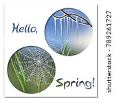 hello spring greeting card... | Shutterstock .eps vector #789261727