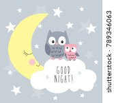 cute owls on the clouds vector... | Shutterstock .eps vector #789346063