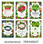fresh natural berries posters... | Shutterstock .eps vector #789440047