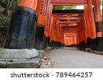 kyoto japan   november 11  2017 ... | Shutterstock . vector #789464257