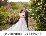 young bride and groom couple in ... | Shutterstock . vector #789544147