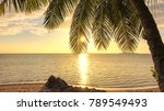 Coconut Palm Tree At Sunset On...