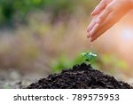 ecology concept background. | Shutterstock . vector #789575953