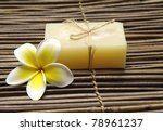frangipani flower with natural... | Shutterstock . vector #78961237