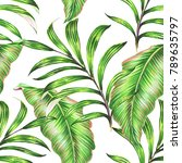 tropical palm leaves  jungle... | Shutterstock . vector #789635797