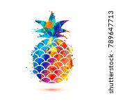 pineapple icon on white... | Shutterstock .eps vector #789647713