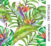 tropical floral seamless... | Shutterstock . vector #789757363