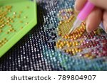 diamond embroidery with a pen | Shutterstock . vector #789804907