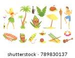 hawaiian party set  hawaii... | Shutterstock .eps vector #789830137