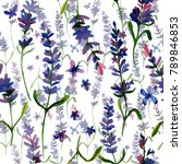 beautiful hand drawn  lavender... | Shutterstock . vector #789846853